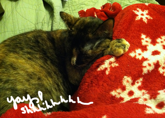 maliLapcat